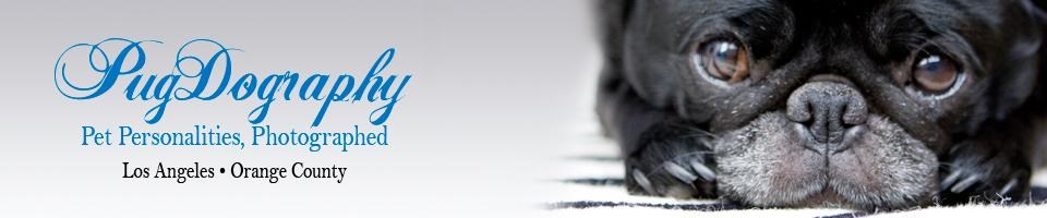 Pugdography.com